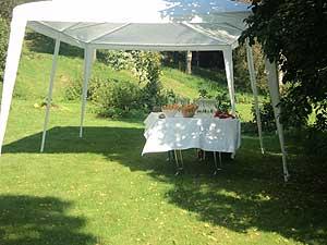 Frägsta Hälsingegård bröllop - Fördrink trädgården
